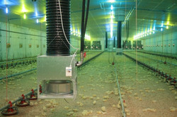 Indirect water-air shed heating