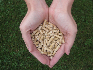 Why Use Wood Pellets for Heating?