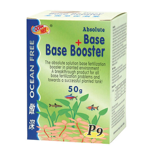ABSOLUTE BASE + BASE BOOSTER