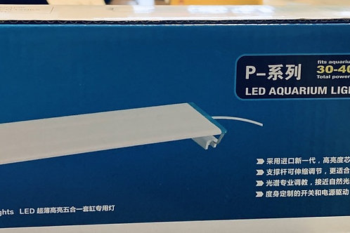 COCO SUPER THIN LED (BLUE+WHITE)