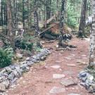 Creating backyard fairy trails