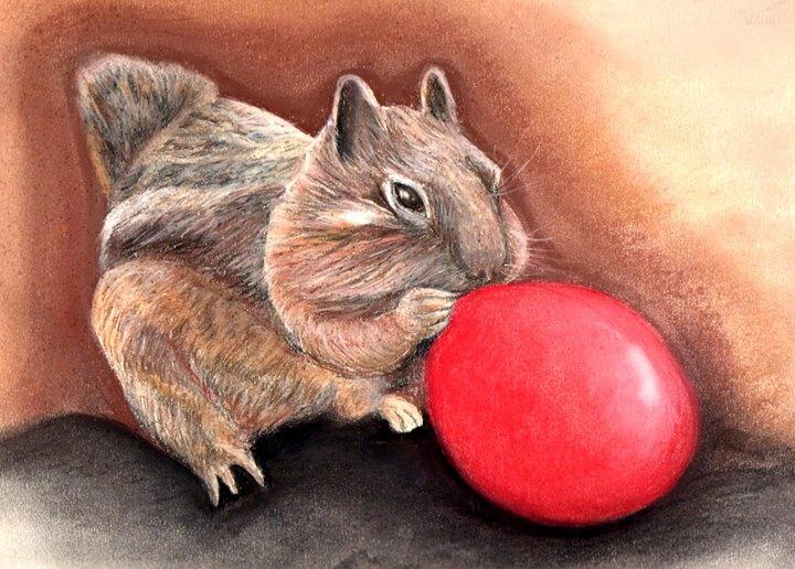 Squirrel fun