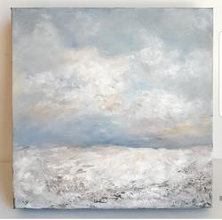 Soft fields of winter 10x10