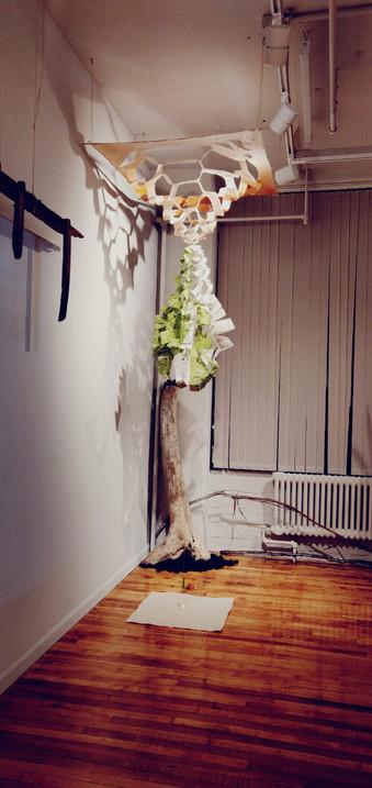 Paper Sculpture I