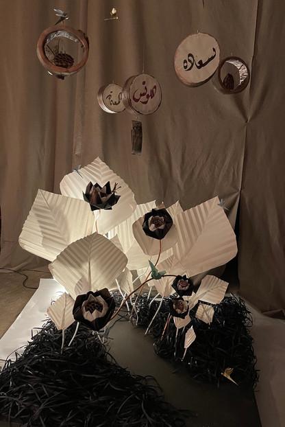 lotus 6.jpg
