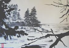 Bayda_Nova Scotia_edited.png