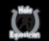 Haile Logo1.png
