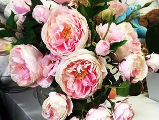 Notre fleur du mois: La Pivoine