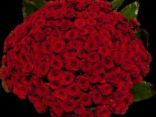 Notre fleur du mois: La rose