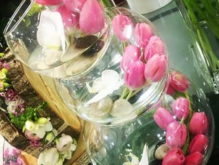 Notre fleur du mois: La Tulipe