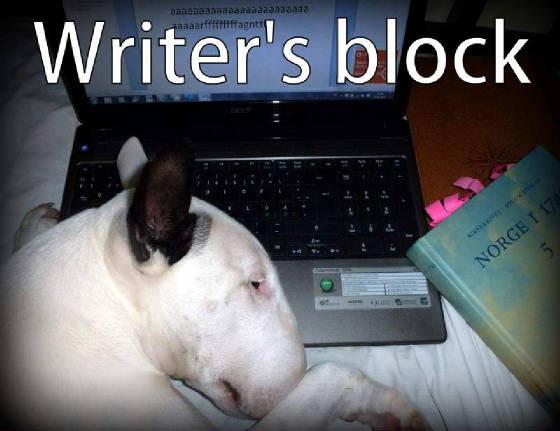 Forfatterblogg