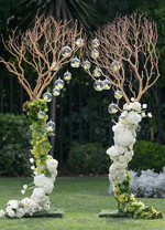 Branches-create-an-archway-with-lovely-w