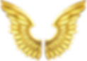 wing-clipart-transparent-5.png