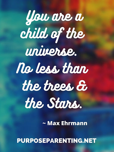You are a child of the universe.jpg