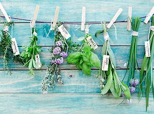 The Kindred Cauldron Herbs.jpg