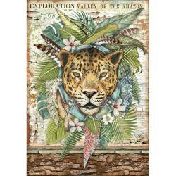 Jaguar, Amazonia