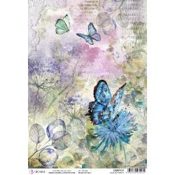 Ciao Bella~Blue Butterfly, Microcosmos