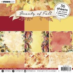 NR. 12, Beauty Of Fall 6 x 6