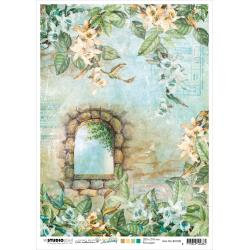 NR. 08, Stone Window/Orchids