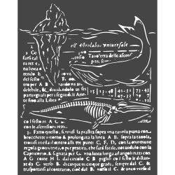 Whale, Arctic Antarctic Stencil