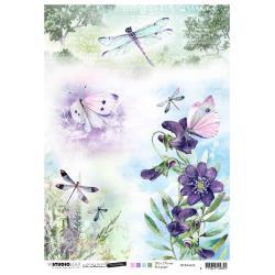 Nr.36, Butterflies & Dragonflies