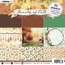NR. 13, Beauty Of Fall 6 x 6