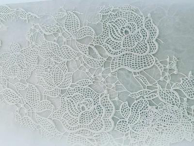 Rose lace  background 5x7 roughly