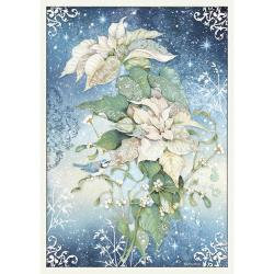 Poinsettia White, Winter Tales large A3