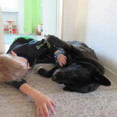 Schulhund Lotti liebt ihre Aufgabe