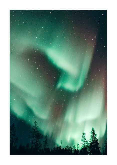 Lapland Lights