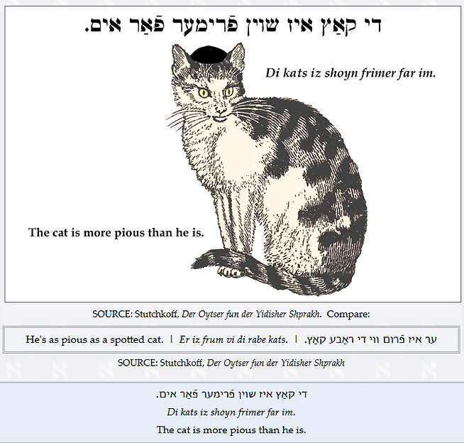cat more pious.png