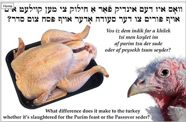 Yiddisher Turkey.png