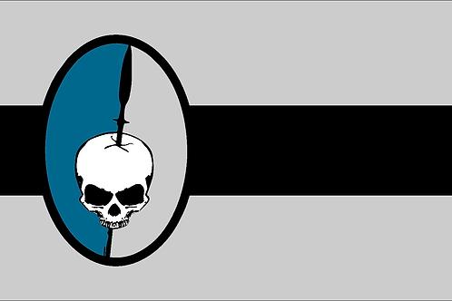 2014 CAA Flag