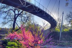 liberty bridge downtown Greenville