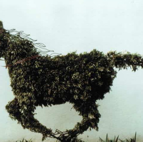 TOPIARY STEAD