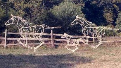 FREEDOM'S GALLOP FAMILY