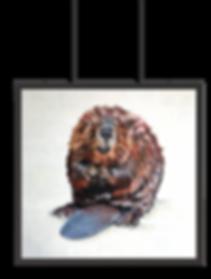 Beaver_frame.png