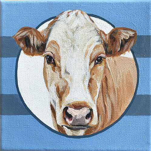 Dairy Cow with Blue Stripes - 6x6