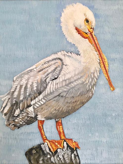 Perched Pelican 9x12
