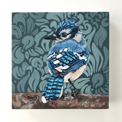 Baroque Blue Jay 8x8