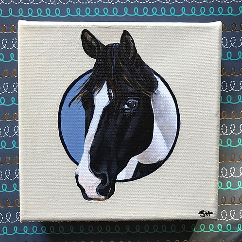 Mini Paint Horse Portrait