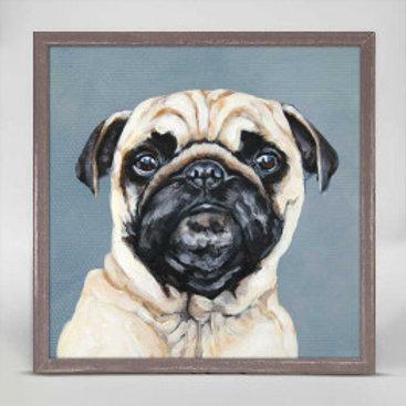 Pug on Blue
