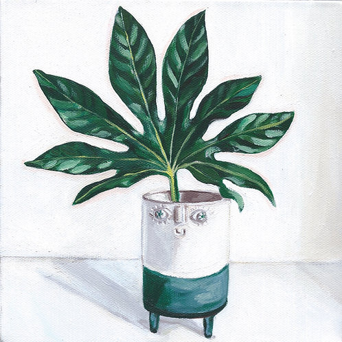 Smiley Pot Plant - 8x8