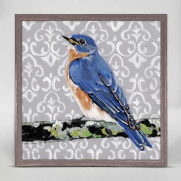 Bluebird on Grey
