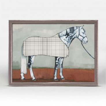 Gray Horse in Plaid