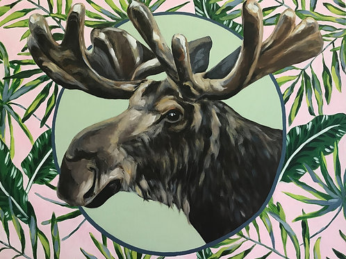 Manfred the Moose 30x24