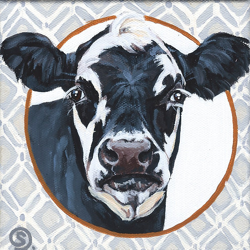 Black and White Dairy Cow - 6x6