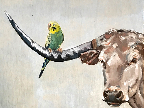 Longhorn and Parakeet 10x8