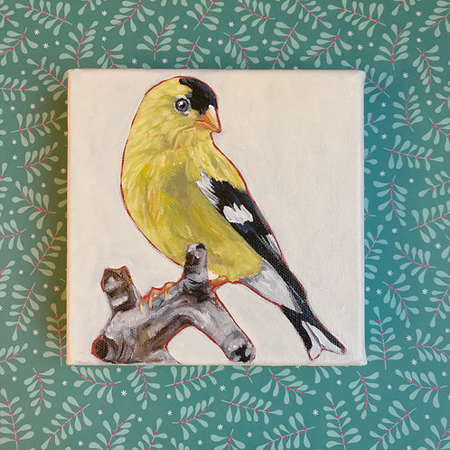 Goldie the Goldfinch 6x6