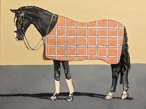 Dark Horse in Plaid 14x11